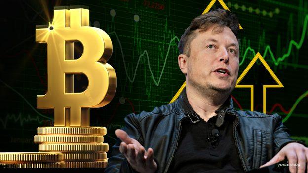 Elon Musk mendukung Bitcoin, berbicara tentang masa depan crypto