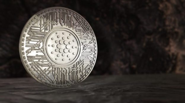 Cardano silver coin one of the largest staking coins