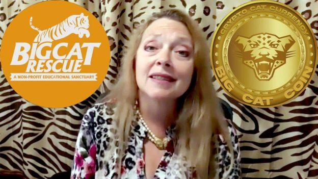 Carole Baskin dari Big Cat Rescue mengumumkan 'crypto-purrency' Big Cat Coin untuk pemberian tip online