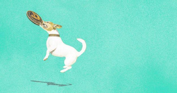 Koin Baby Doge: Bisakah token kripto pulih?