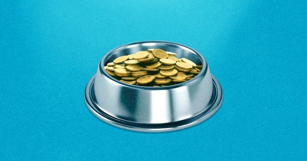 Koin Baby Doge: Mengapa token crypto meningkat