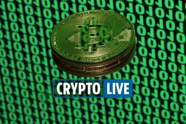 Berita terbaru Cryptocurrency - Harga Bitcoin naik di Coinbase karena crypto Shiba Inu juga meningkat